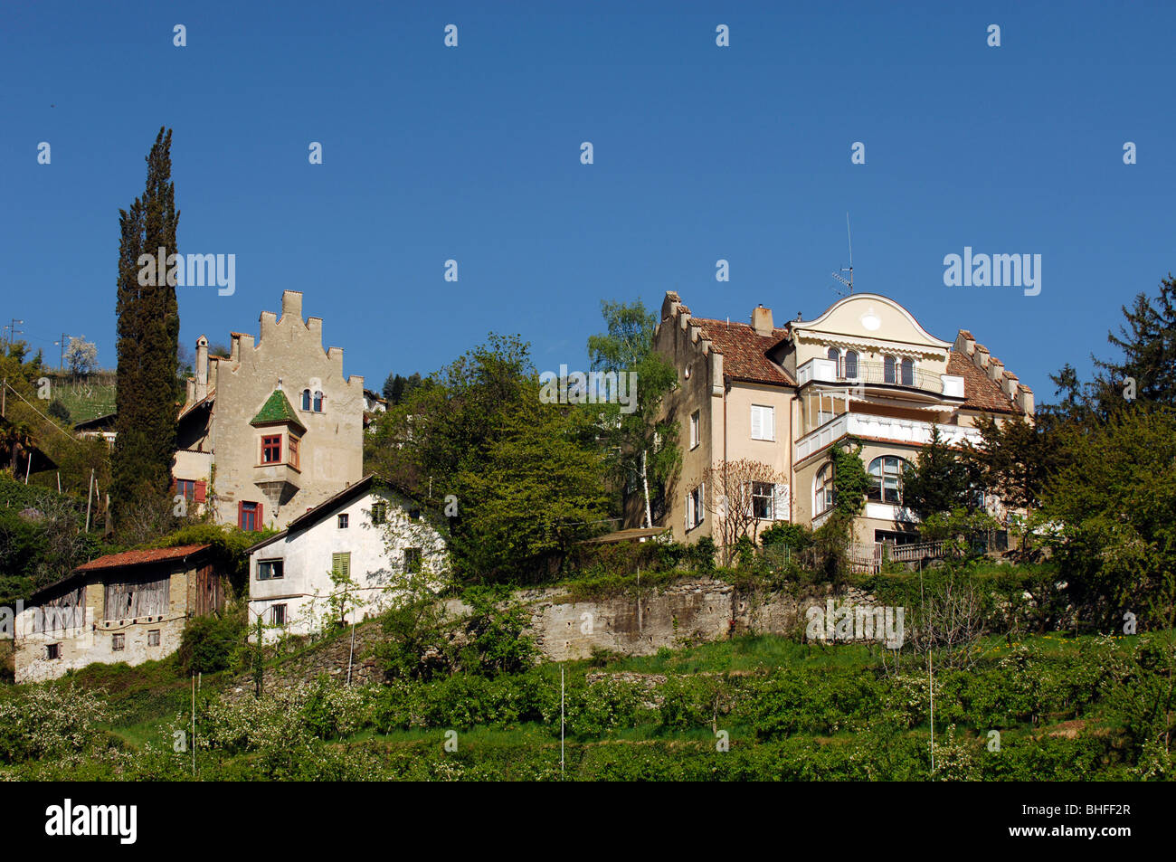 Venös Stock Photos & Venös Stock Images - Alamy