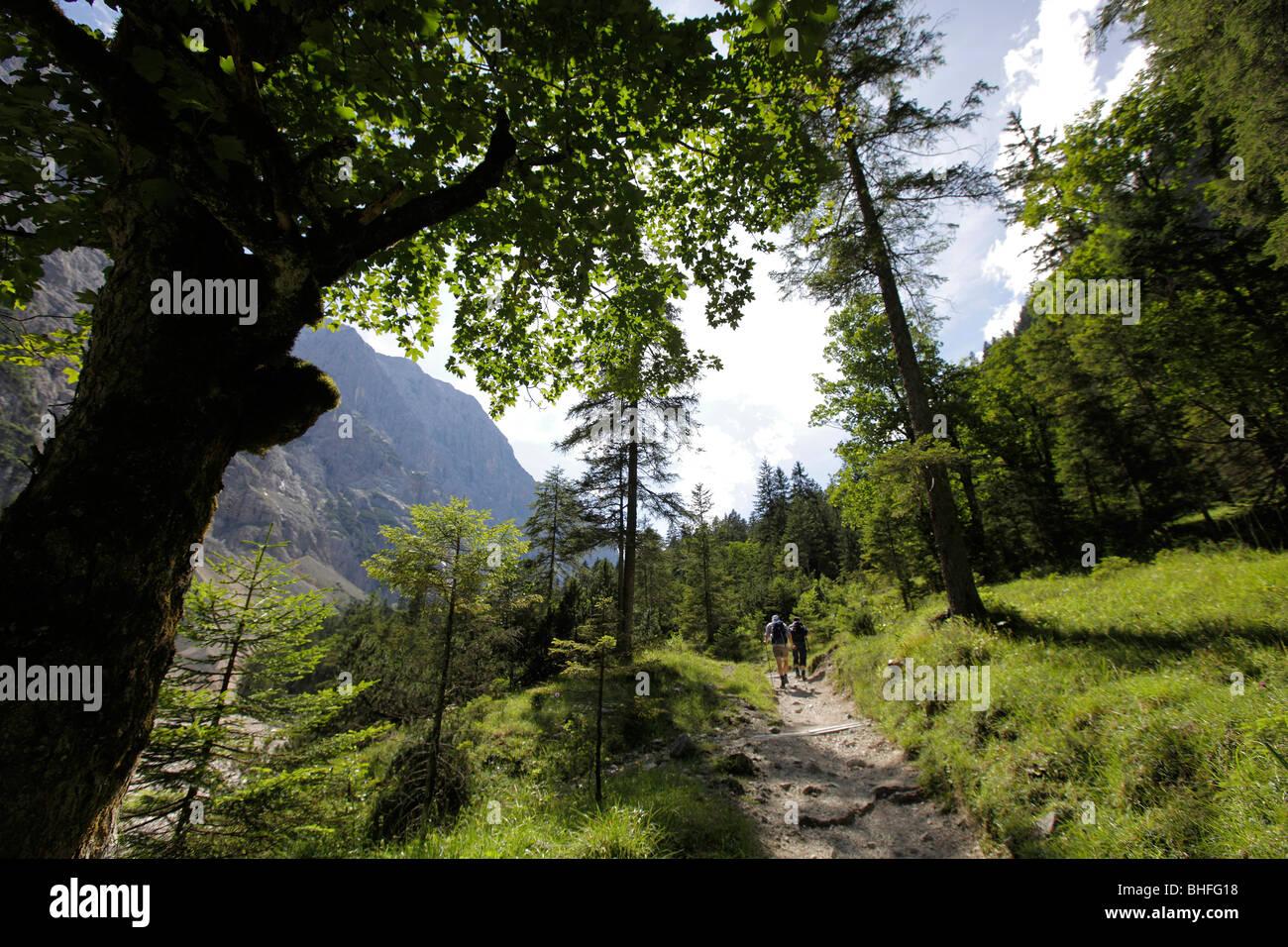 Hiking trail to mount Zugspitze, Rein valley, near Garmisch, Bavaria, Germany - Stock Image