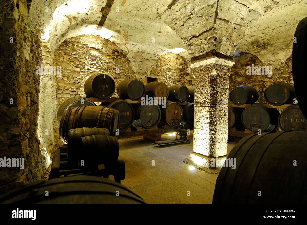 Wine celler with wine barrels, South Tyrol Wine Museum, Caldaro, Kaltern an der Weinstrasse, South Tyrol, Italy - Stock Image