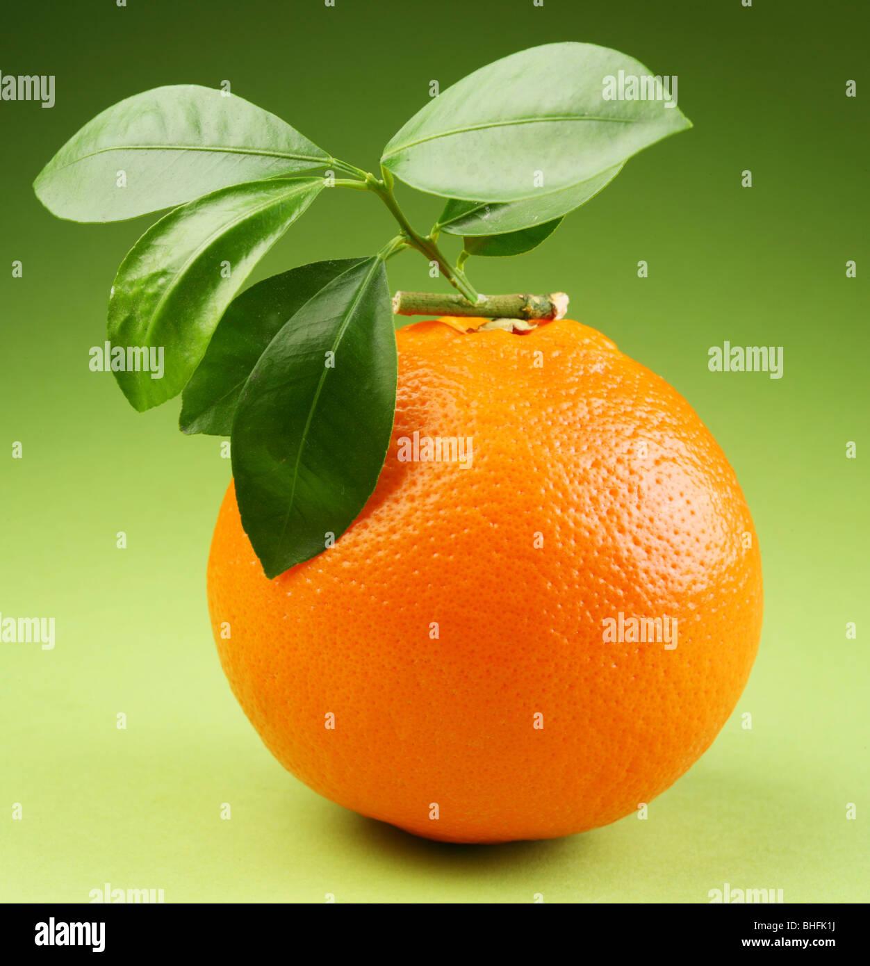 Ripe orange on a green background - Stock Image
