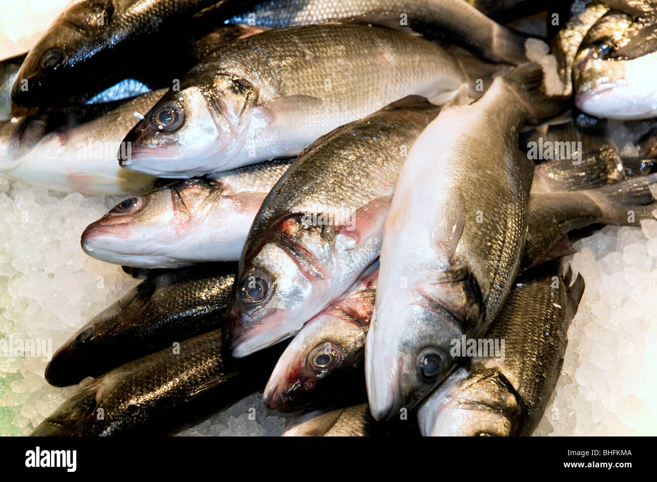 Fish for sale in a market - Stock Image