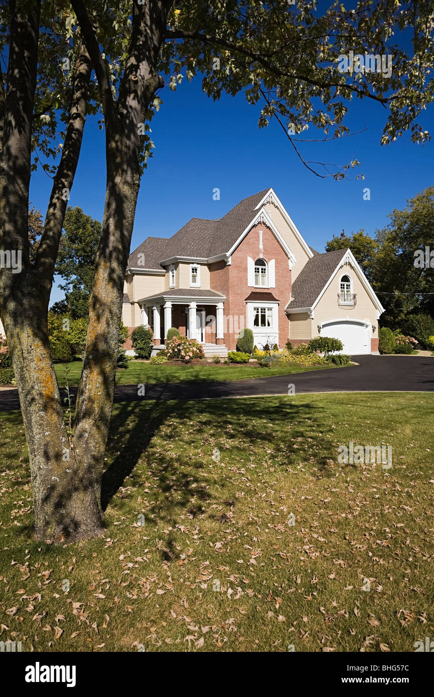 Detached house and garden - Stock Image