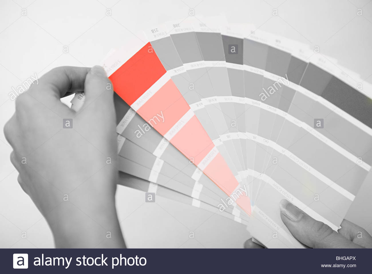 Person holding colour samples - Stock Image