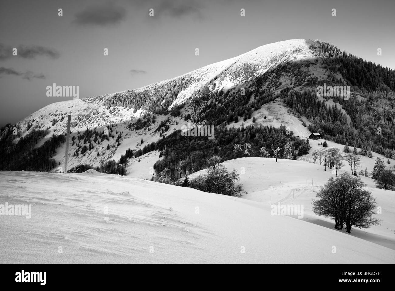 BW landscape in Fatras in Slovakia - Stock Image