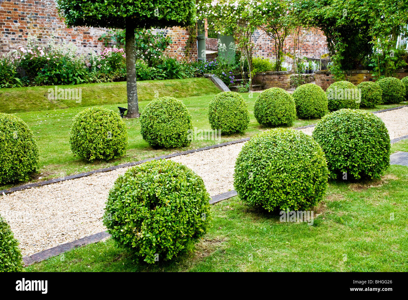on english boxwoods garden design id.html