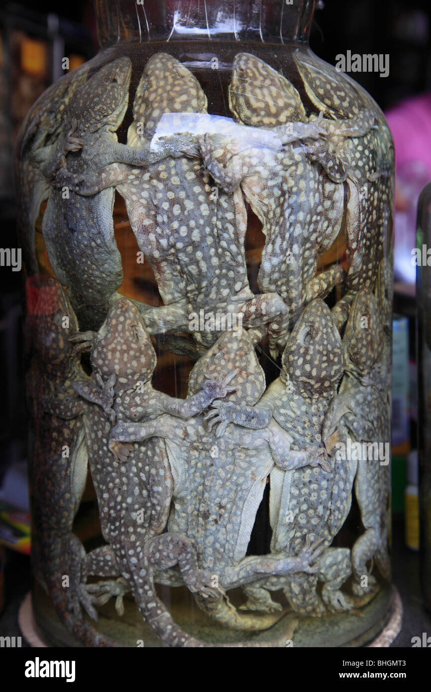 Vietnam, Hue, preserved frogs in a jar, traditional medicine - Stock Image