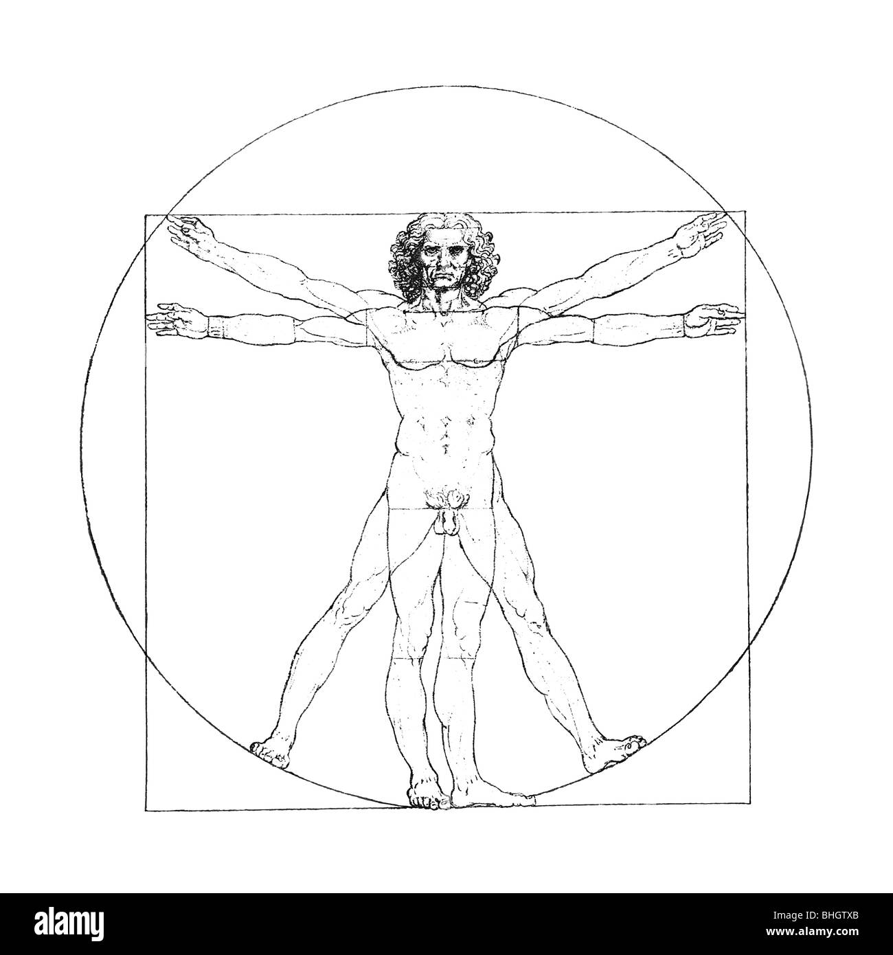 Leonardo Da Vinci's Vitruvian Man, digitally enhanced and retouched, isolated on white. - Stock Image