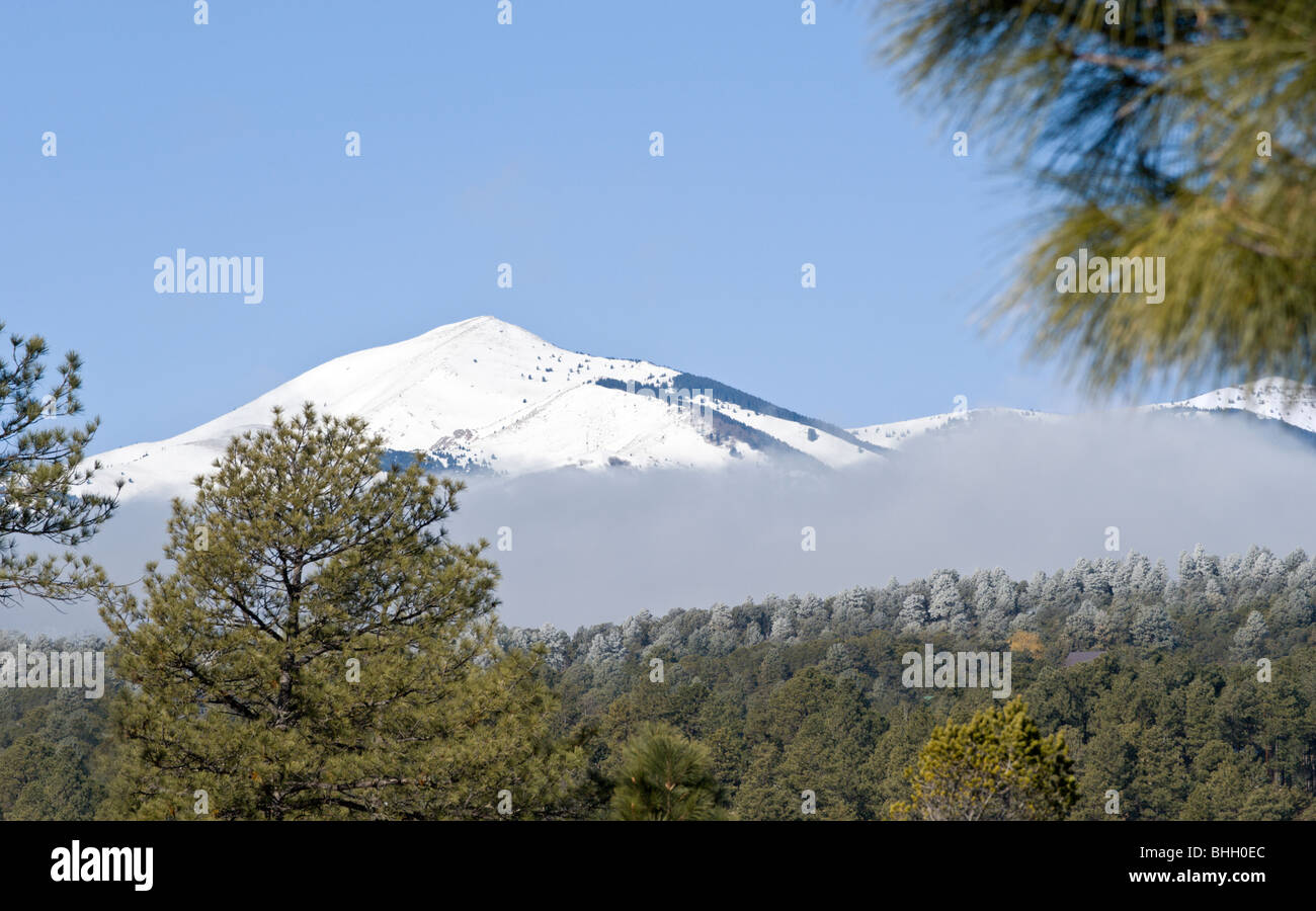 As the morning fog lifts, snowcapped Sierra Blanca soars to the blue sky in the Lincoln National Forest, in Ruidoso, - Stock Image