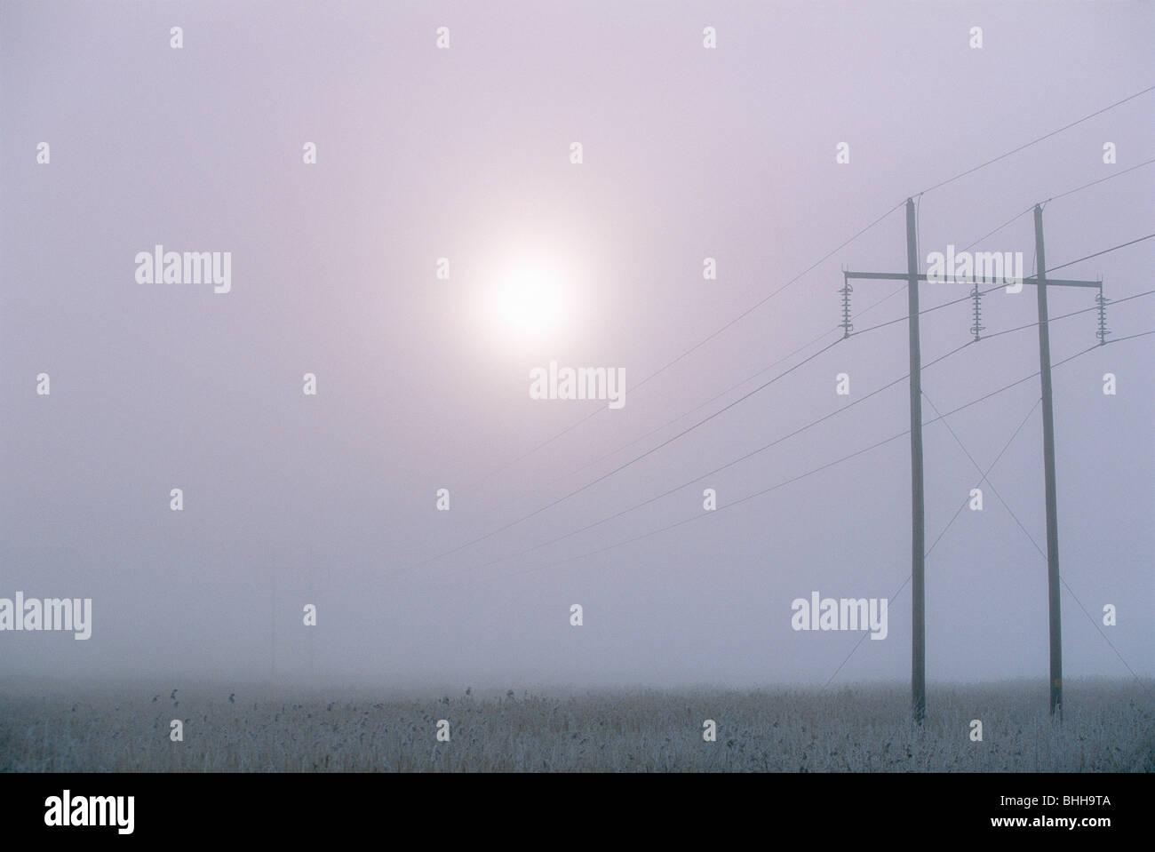 Power line against a foggy sky, Sweden. - Stock Image