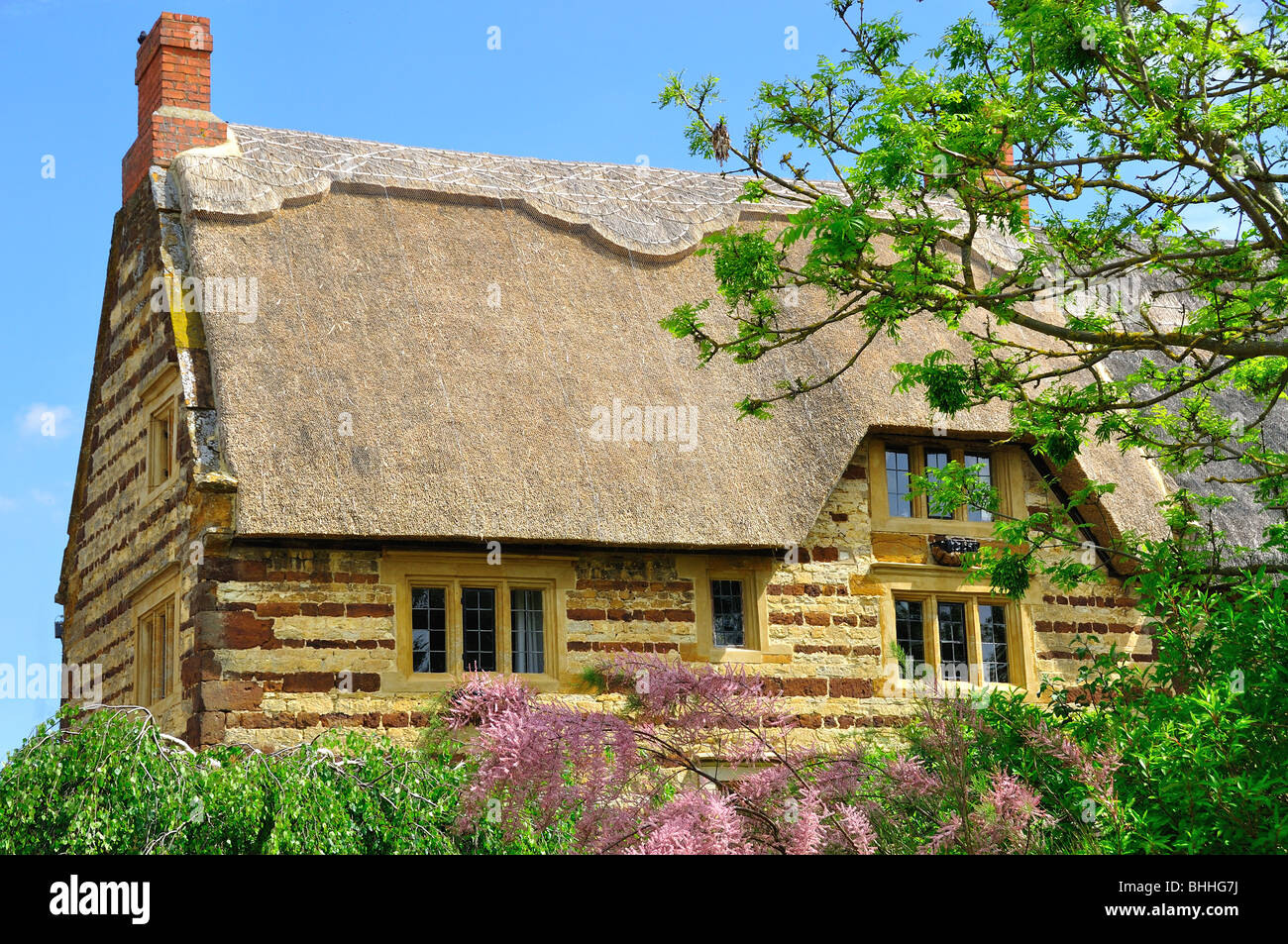 This is a traditionally built cottage located in the village of Blisworth, in Northamptonshire, UK Stock Photo