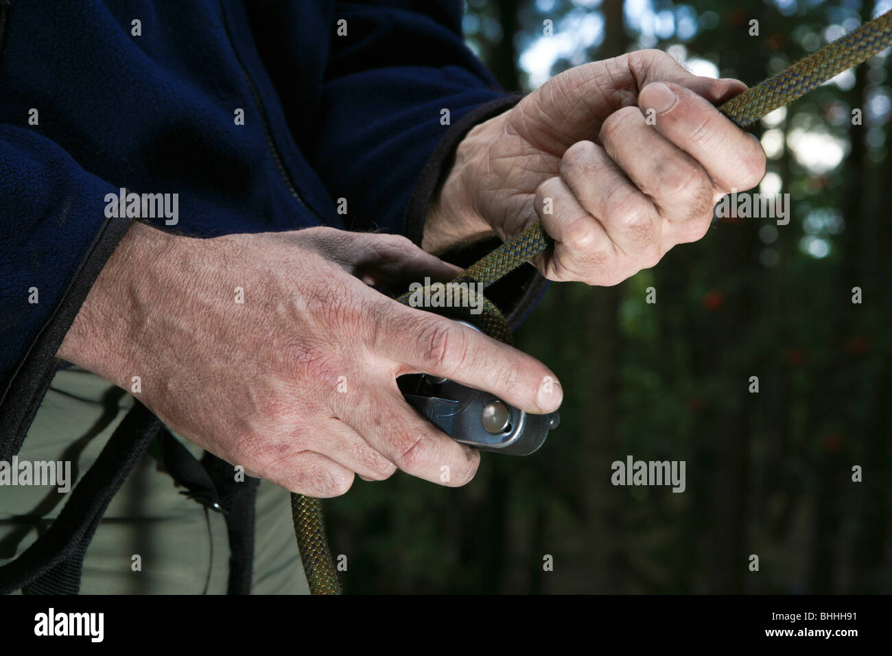 Climber s hands holding rope and belay device, Palatinate, Germany - Stock Image