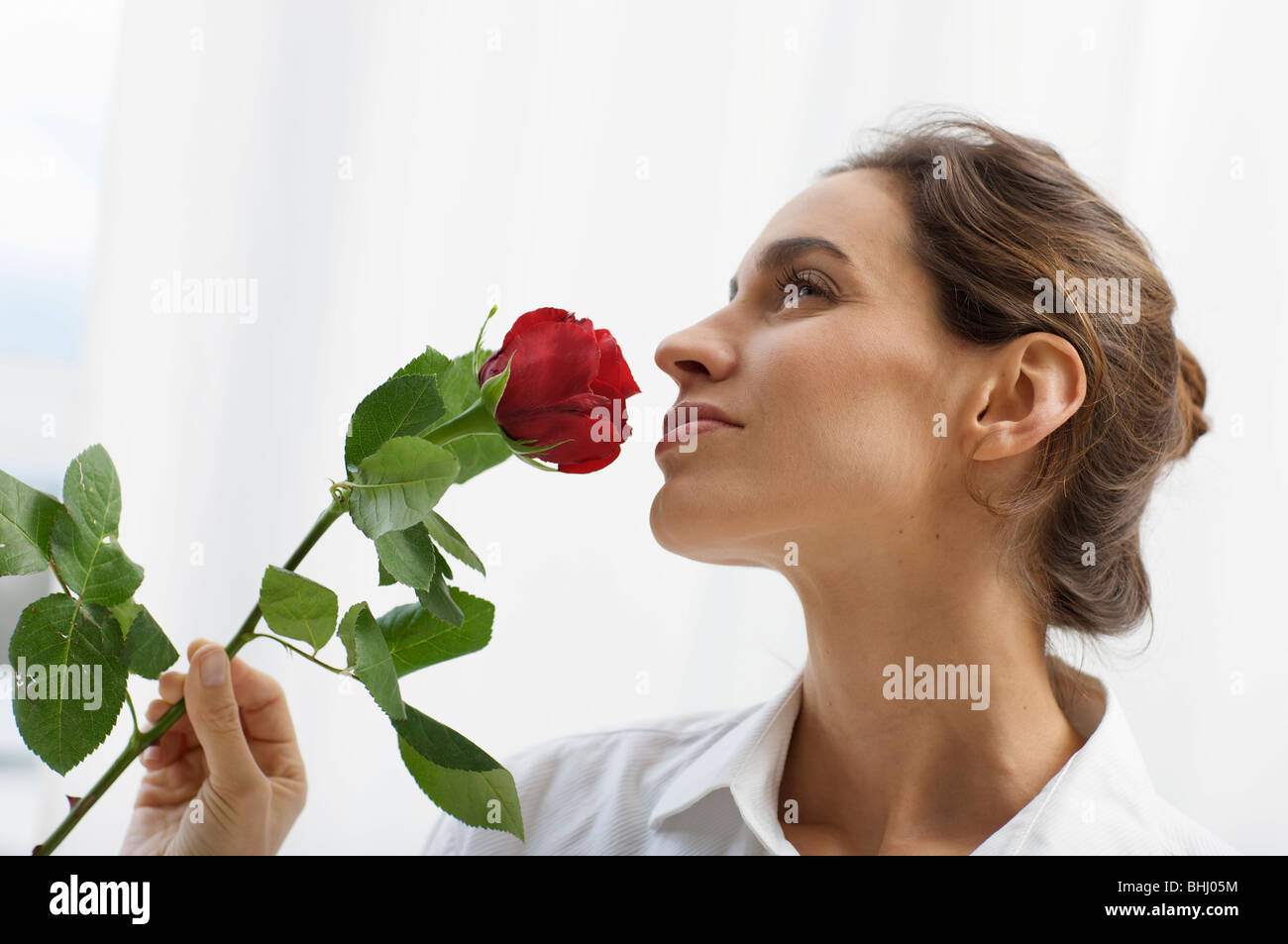 lady adoring the scent of a rose - Stock Image
