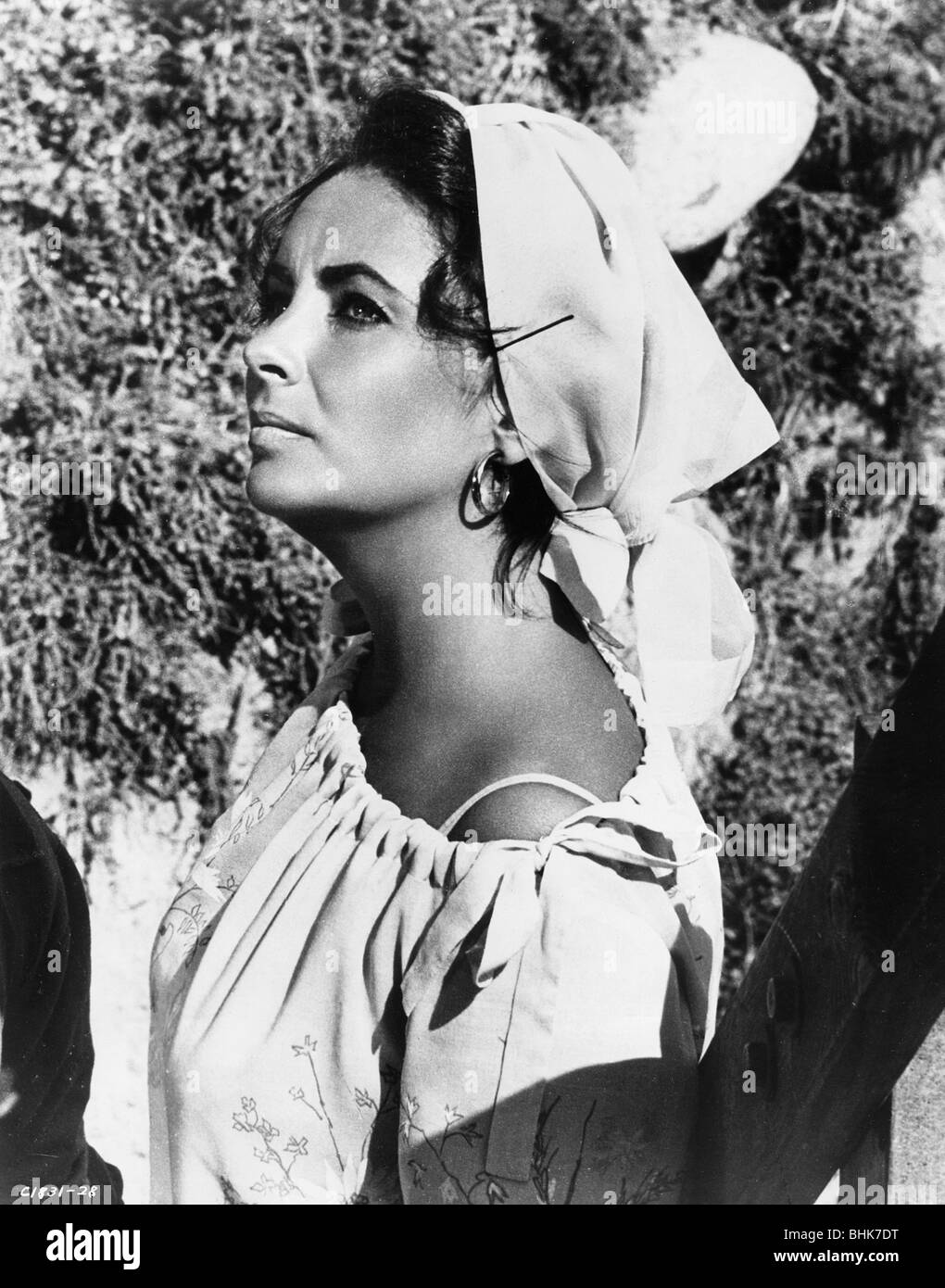 Elizabeth Taylor (1932-), British actress, 1965. - Stock Image