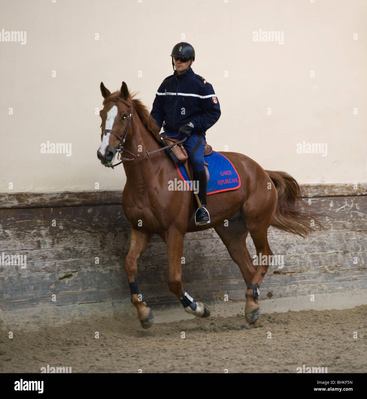 Cavalry French Army Horse Military rider  Guard - Stock Image