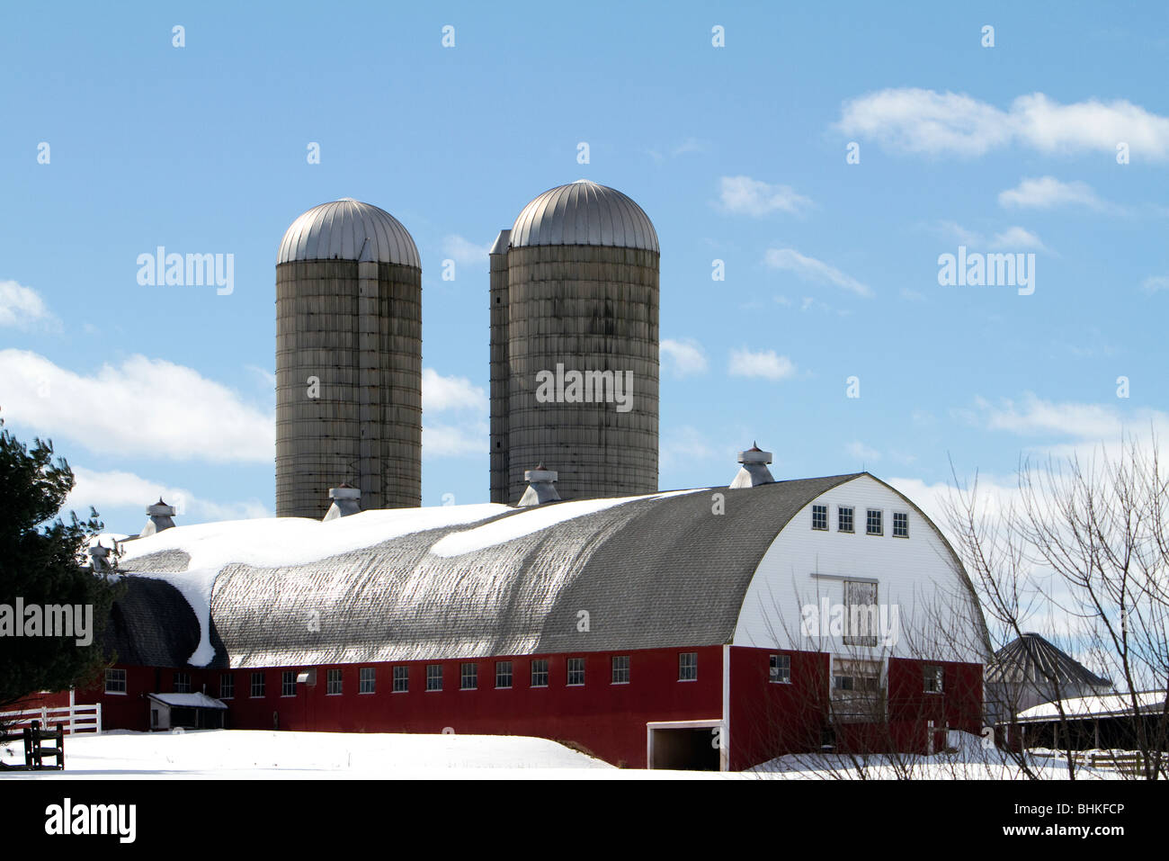 A Modern Dairy Barn With Two Silos Snow Covered Scene Beautiful Blue Sky