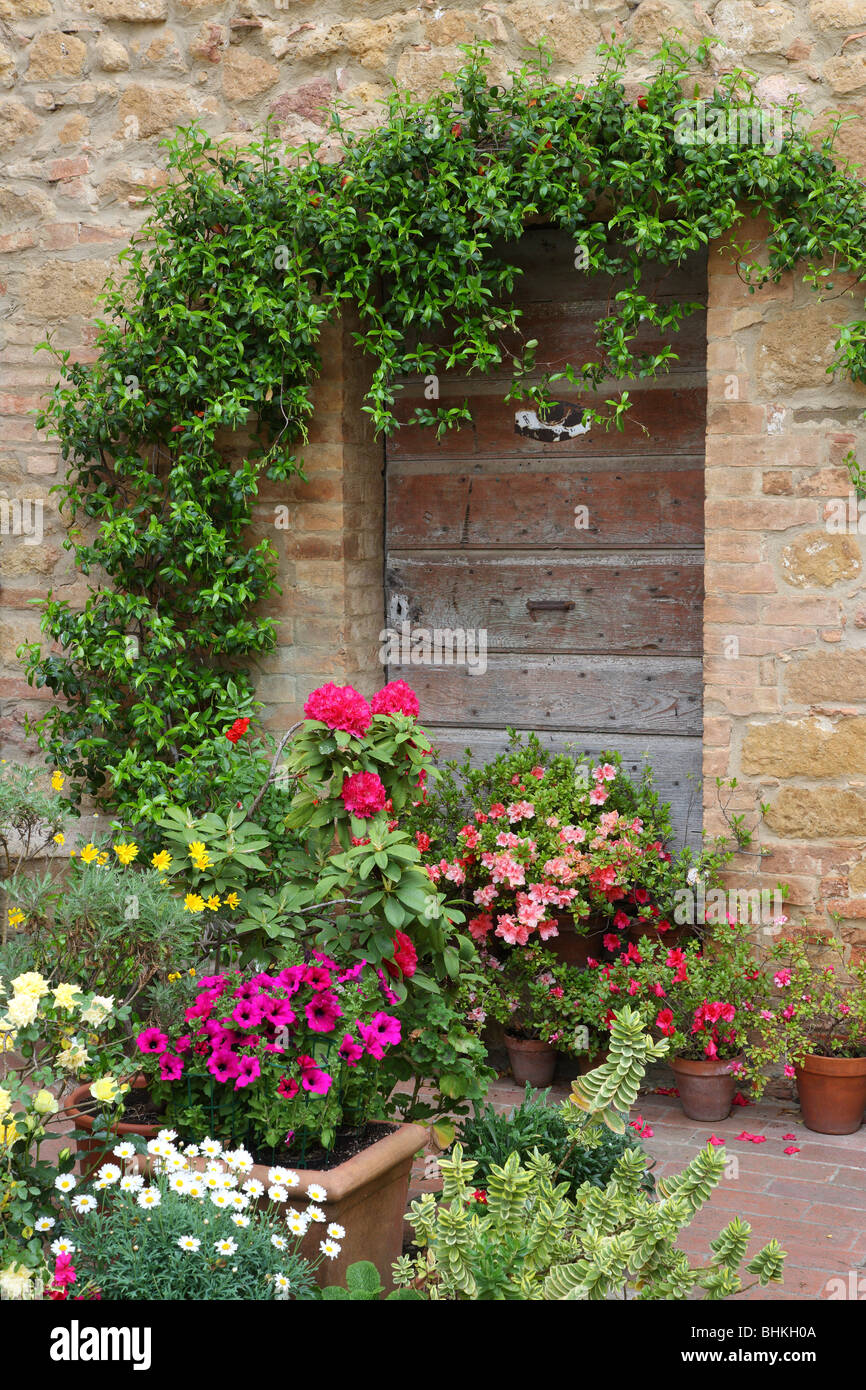 Italy Tuscany Pienza Patio Flowers