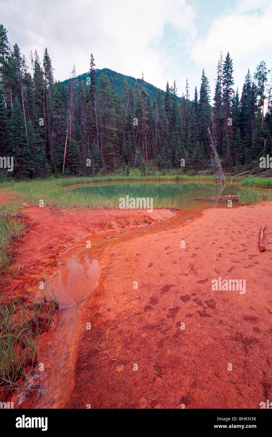 Vertical View of an Ochre Pond, Kootenay National Park, BC, Canada - Stock Image