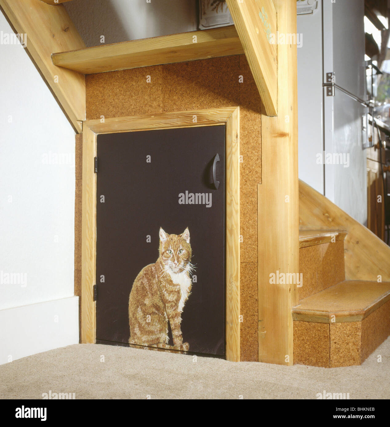 Close Up Of Trompe Loeil Cat Painted Onto Door Of Under Stairs
