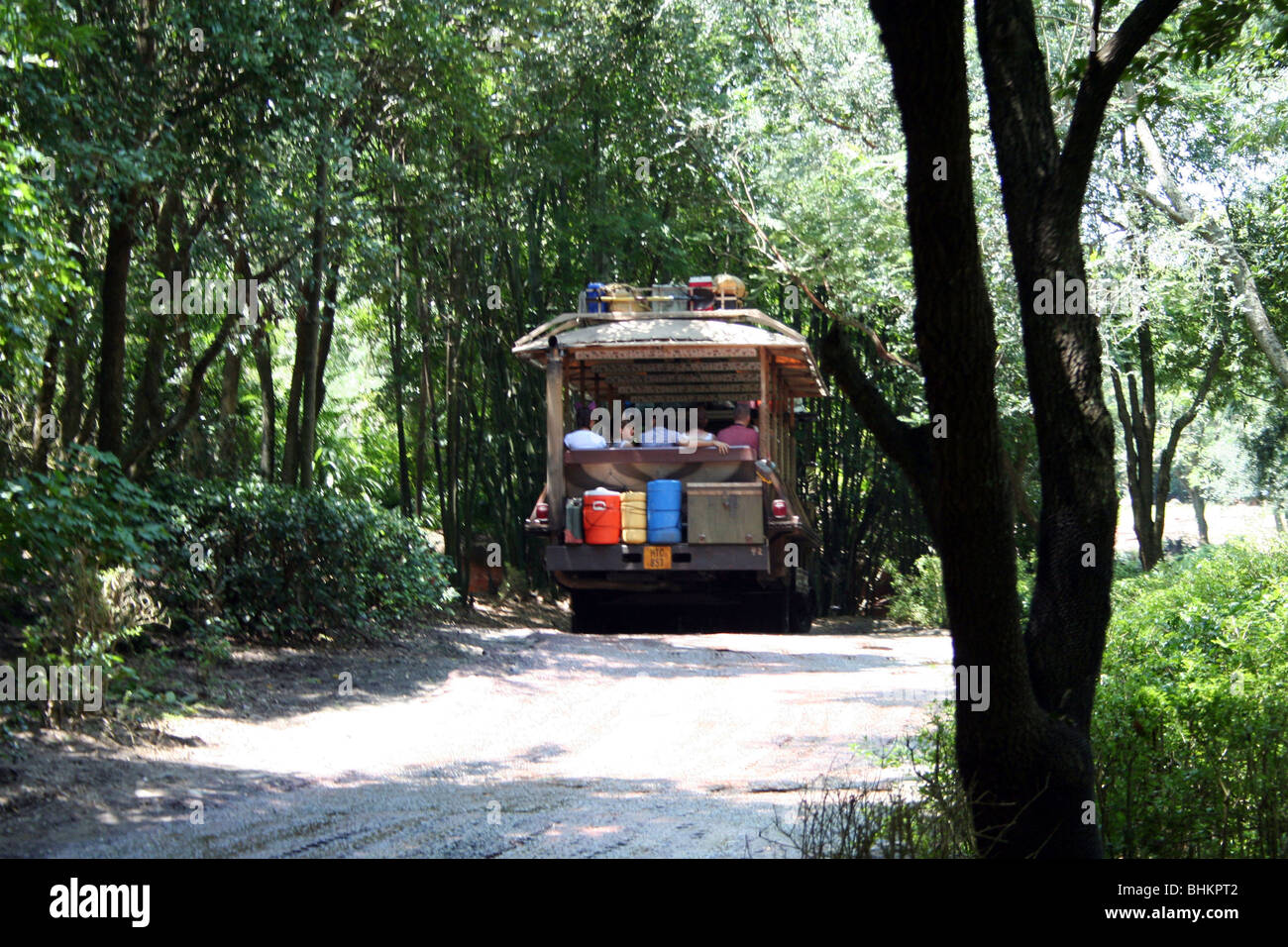 Mount Kilimanjaro safari truck Animal Kingdom WDW Orlando Florida USA - Stock Image