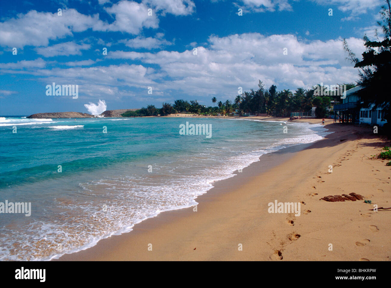 Isabela Puerto Rico Beach Houses