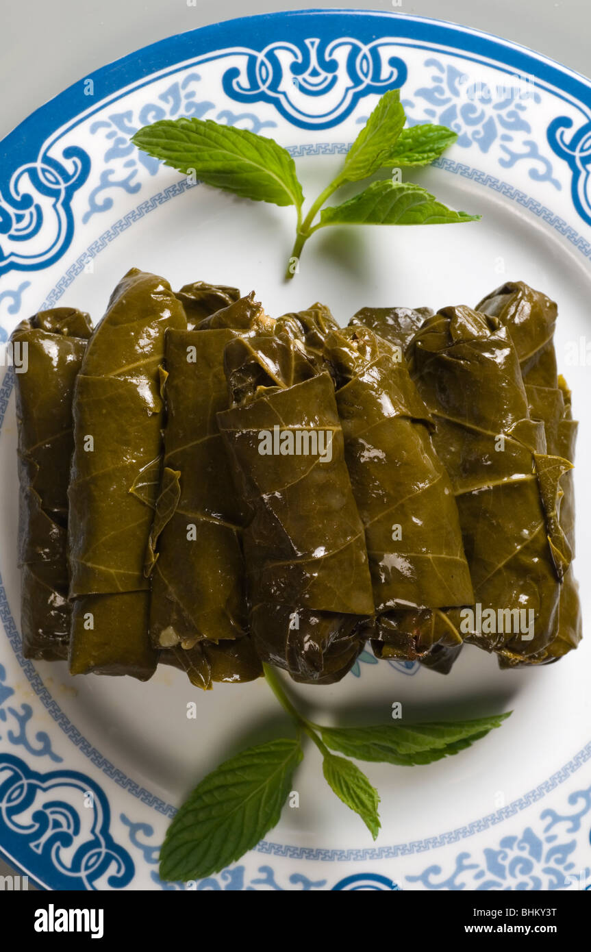 Stuffed vine leaves Beirut Lebanon Middle East - Stock Image