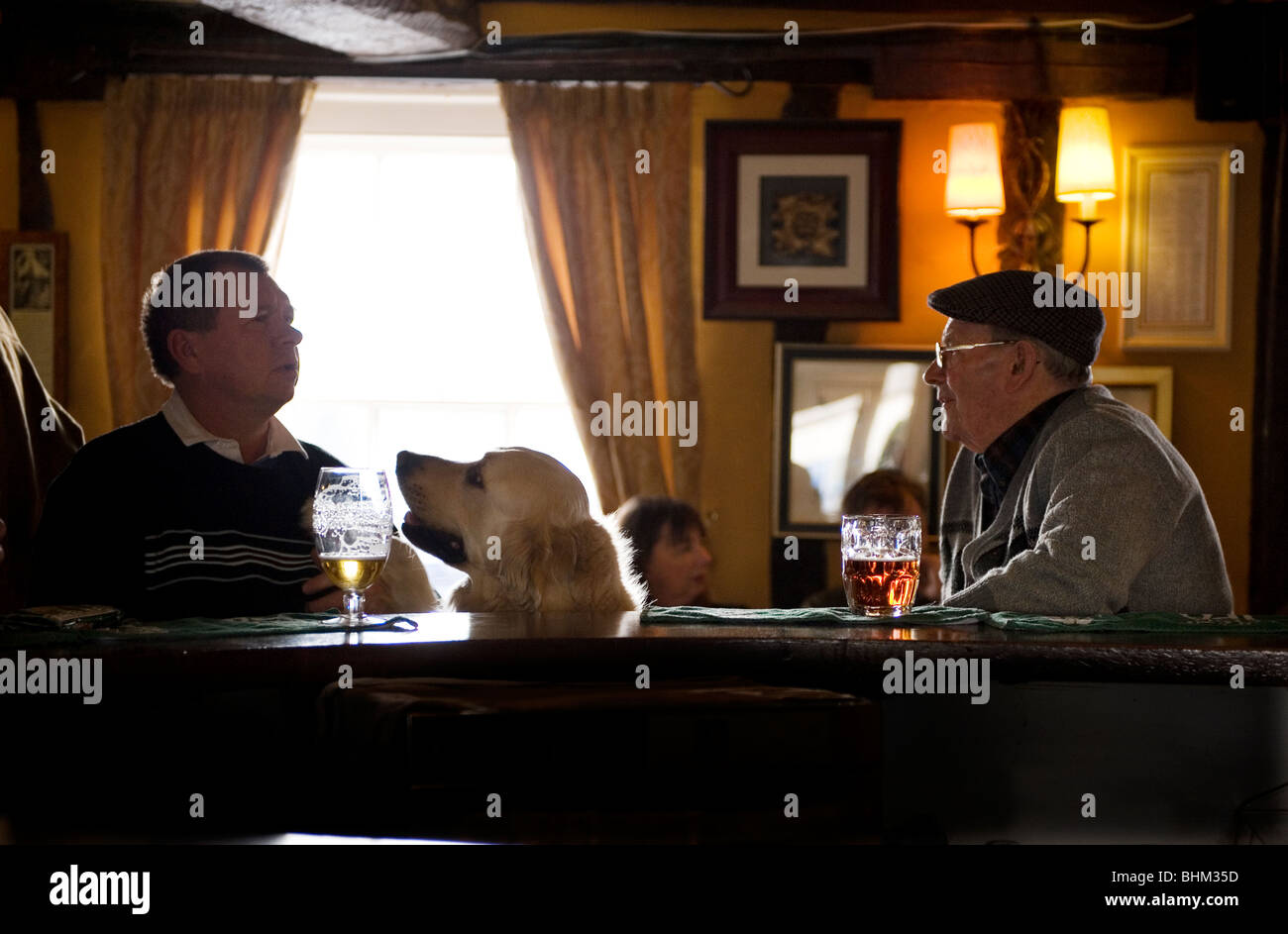 English Pub. Two men and a dog enjoy their pints of beer in a typical English Pub at The Swan, Thaxted, Essex, Britain, - Stock Image