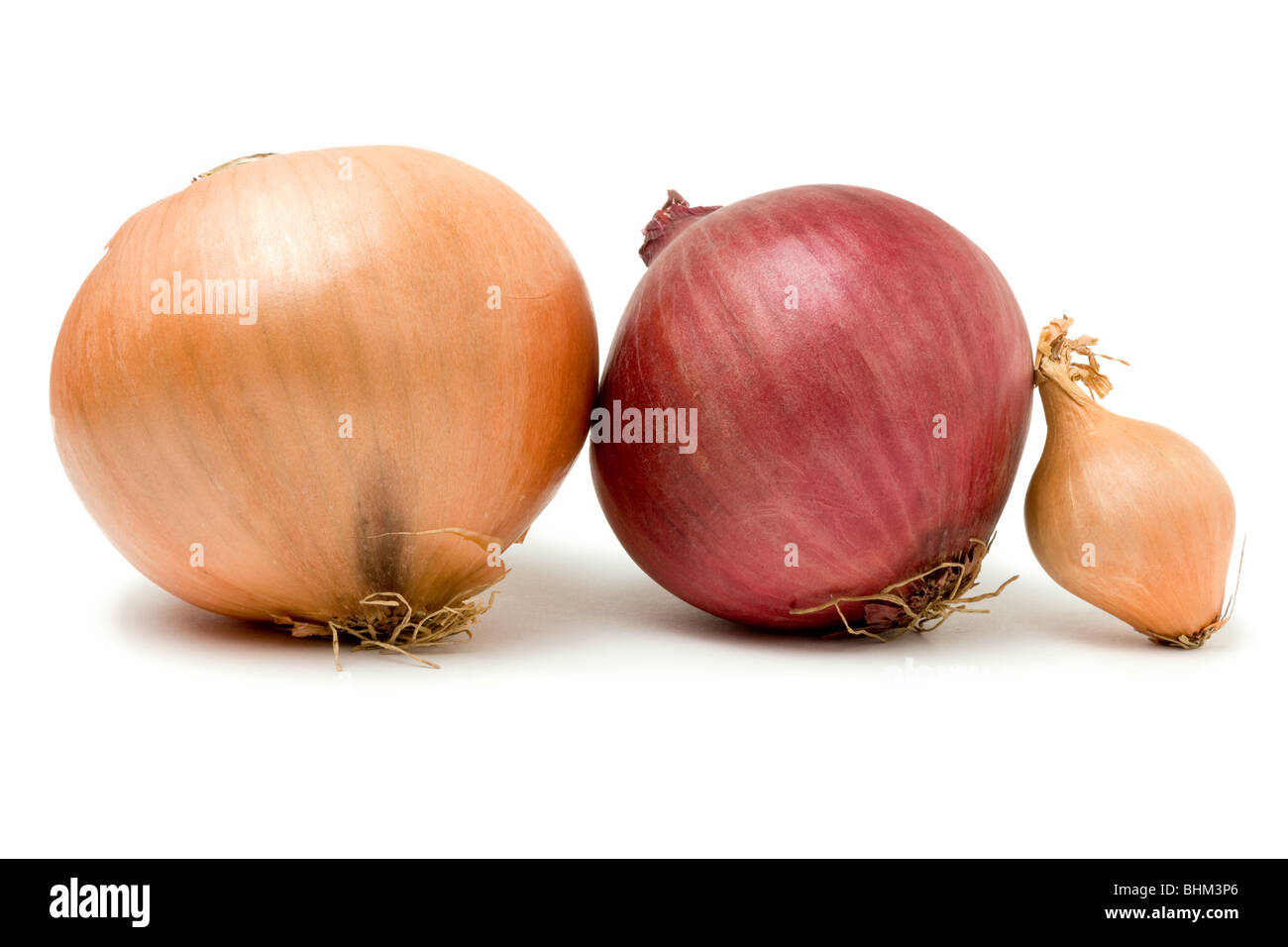 A selection of three onions from the Onion Family isolated against white background. - Stock Image