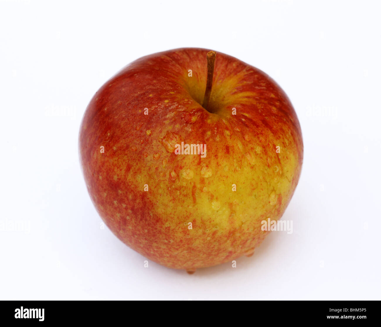 Ripe, fresh, juicy, sweet English apple with water drops on a white background. - Stock Image