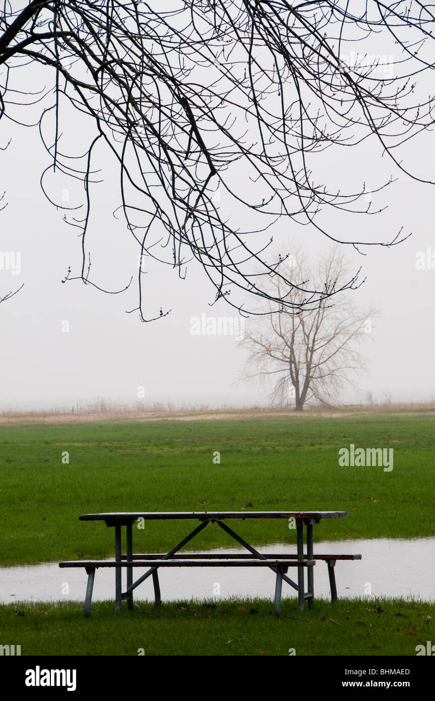 Vertical view of Misty foggy spring day with lone picnic table in front of water with expanse of land trailing off - Stock Image