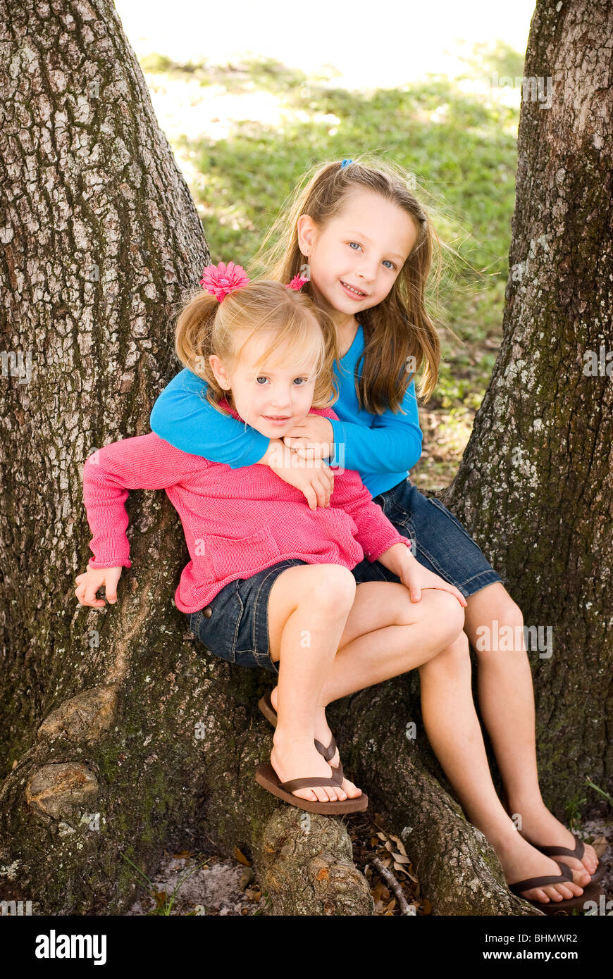 Sisters posing on tree - Stock Image