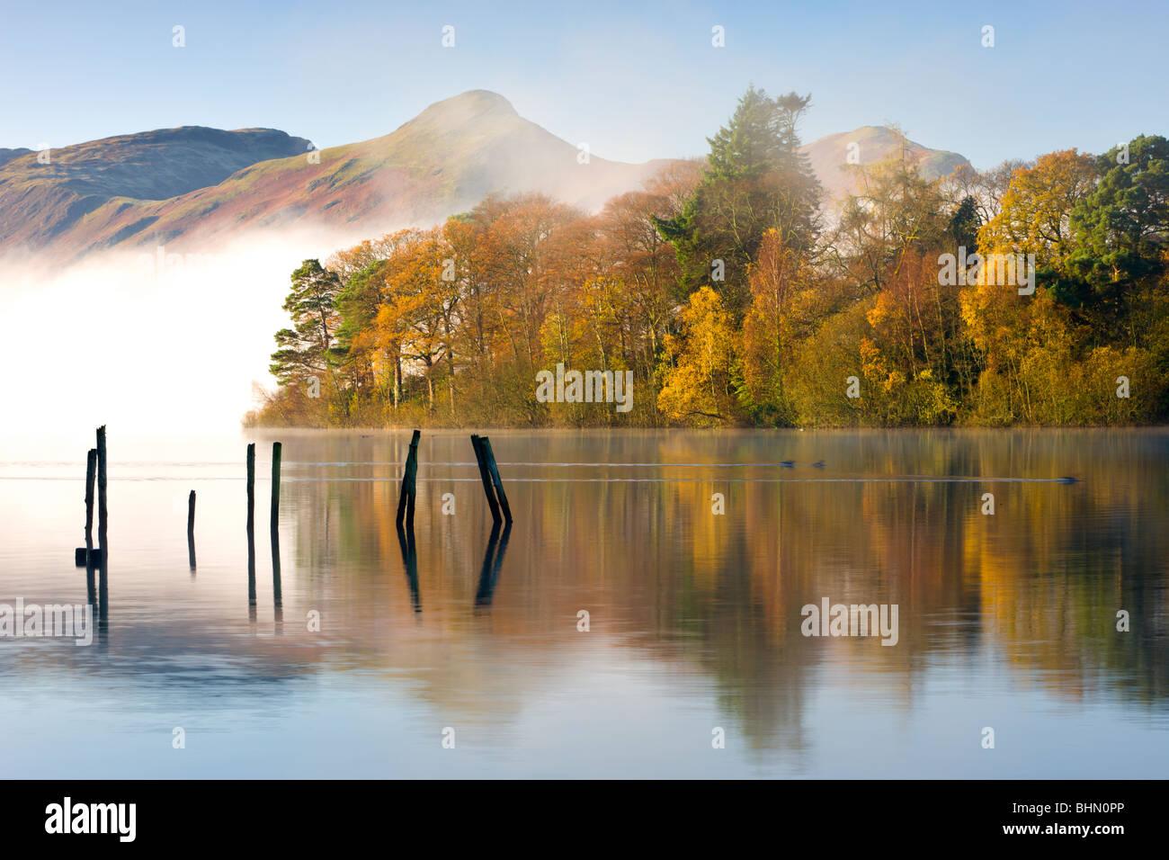 Autumn foliage on the banks of Derwent Water, Keswick, Lake District National Park, Cumbria, England, UK. Autumn - Stock Image