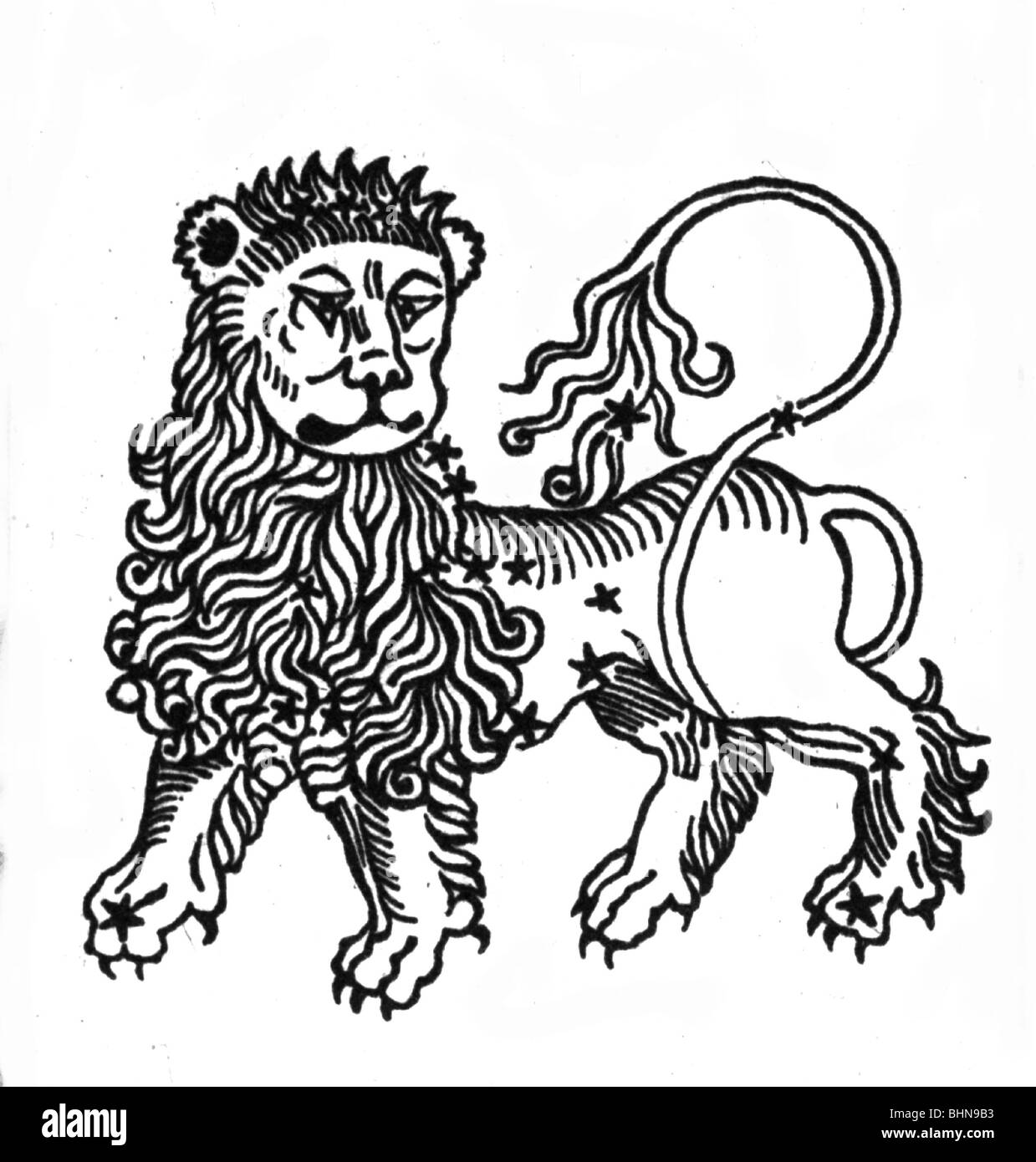 astrology, zodiac, sign of zodiac: Leo, mythologic image