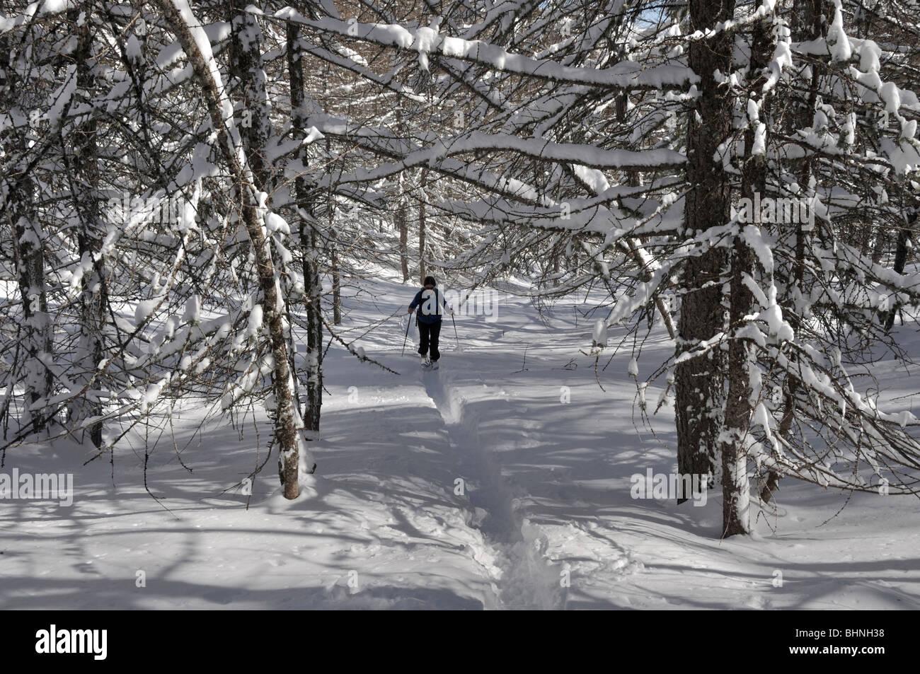 Snowshoeing in Vallon de Caramagne, near Tende, Mercantour Alps, France - Stock Image