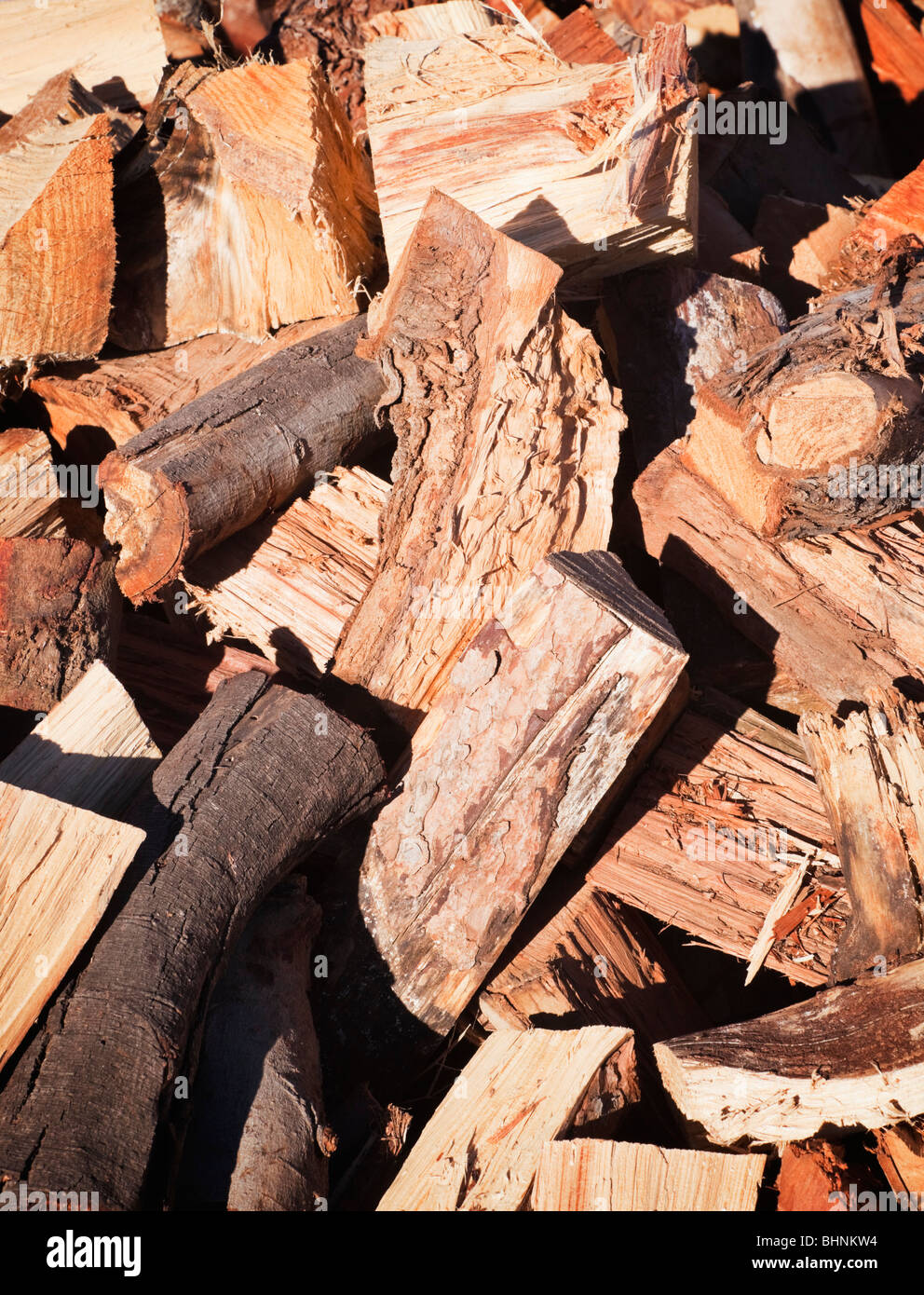 Pile of firewood - Stock Image