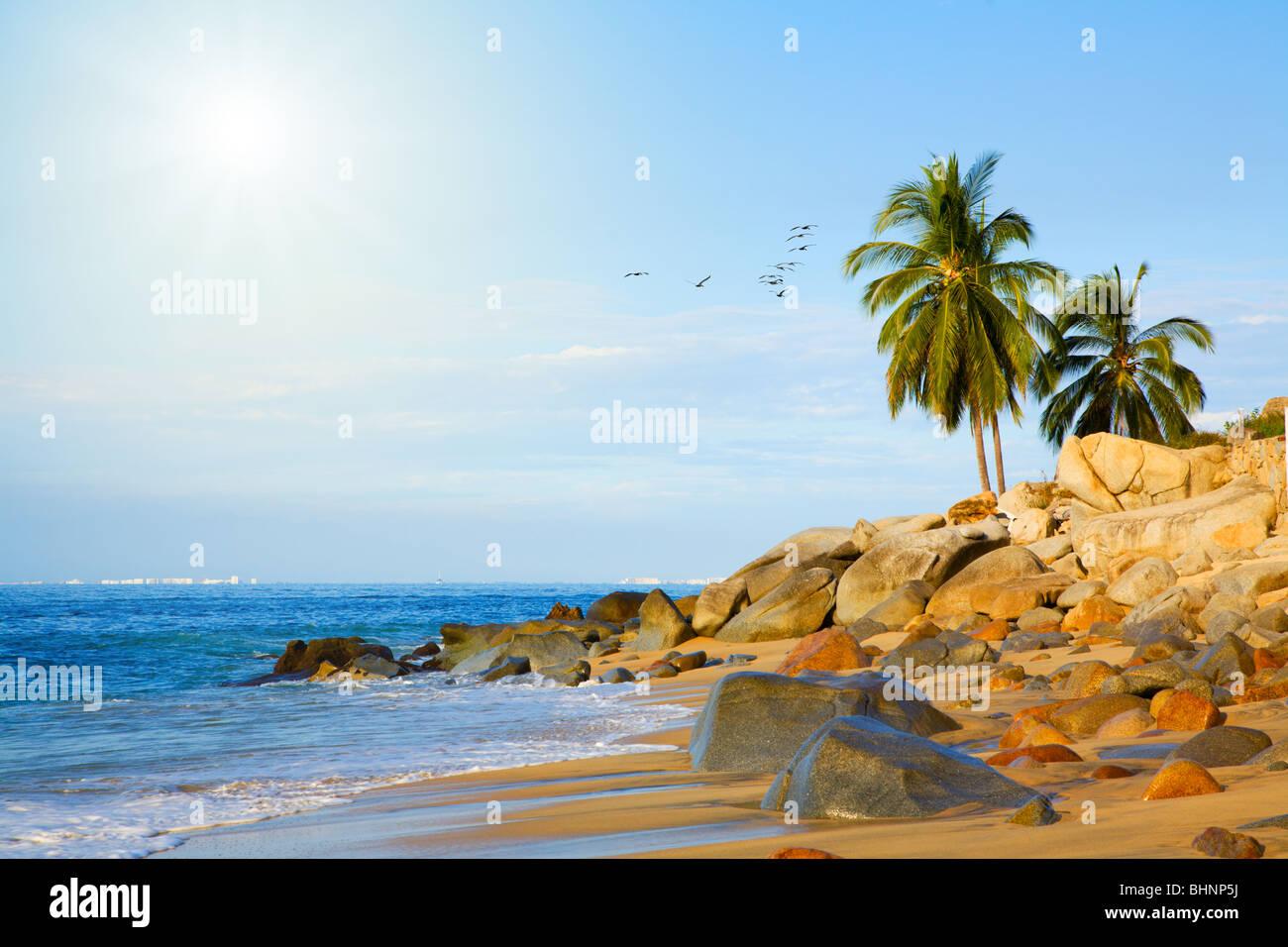 Tropical beach - Stock Image