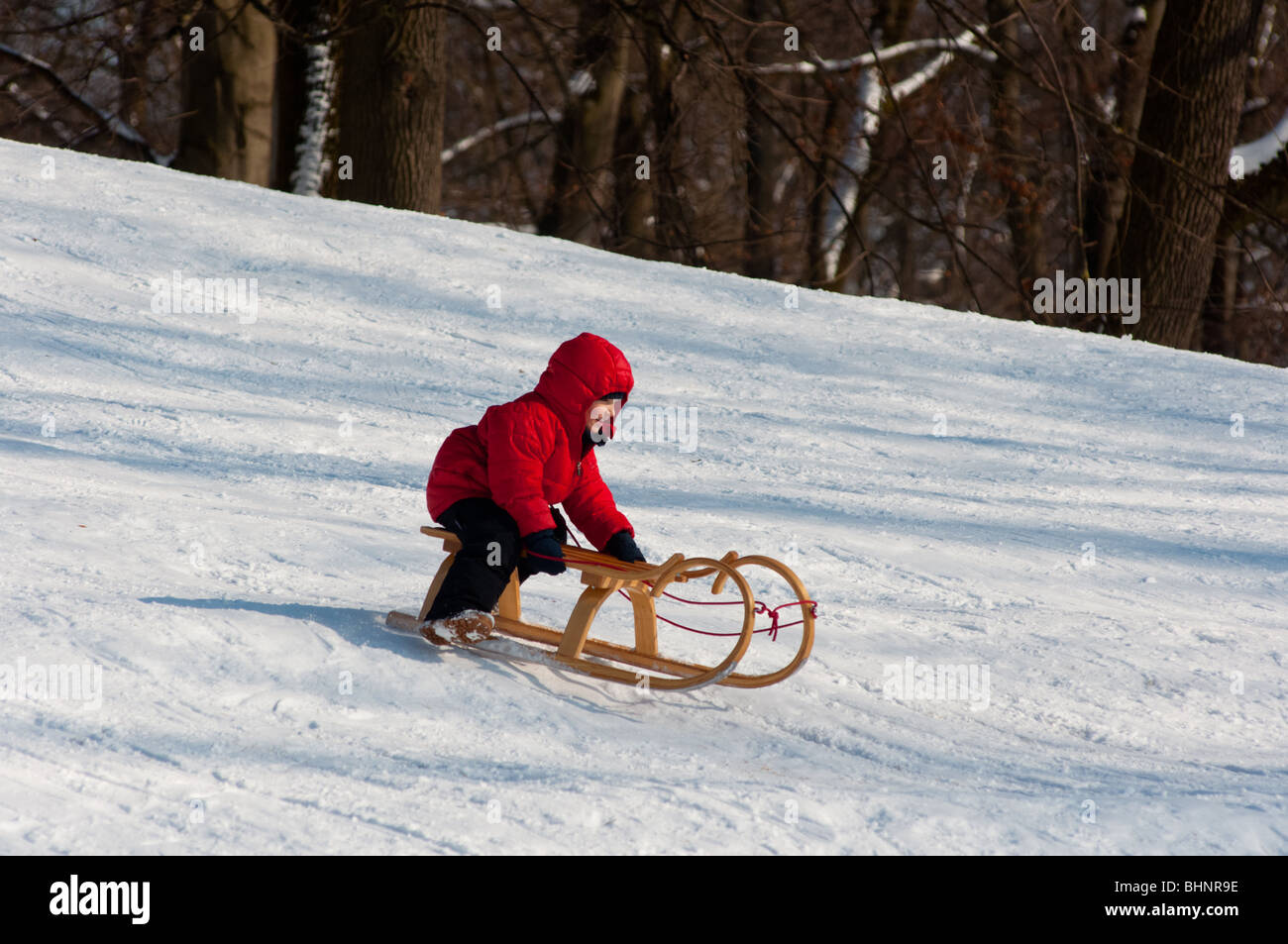 Boy riding his sledge downhill in Englischer garten, Munich, Germany - Stock Image