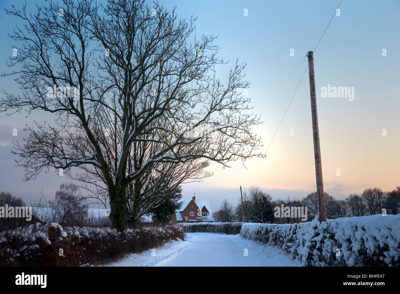Winter evening in a country lane, Prestwood, Buckinghamshire, Chilterns, UK Stock Photo