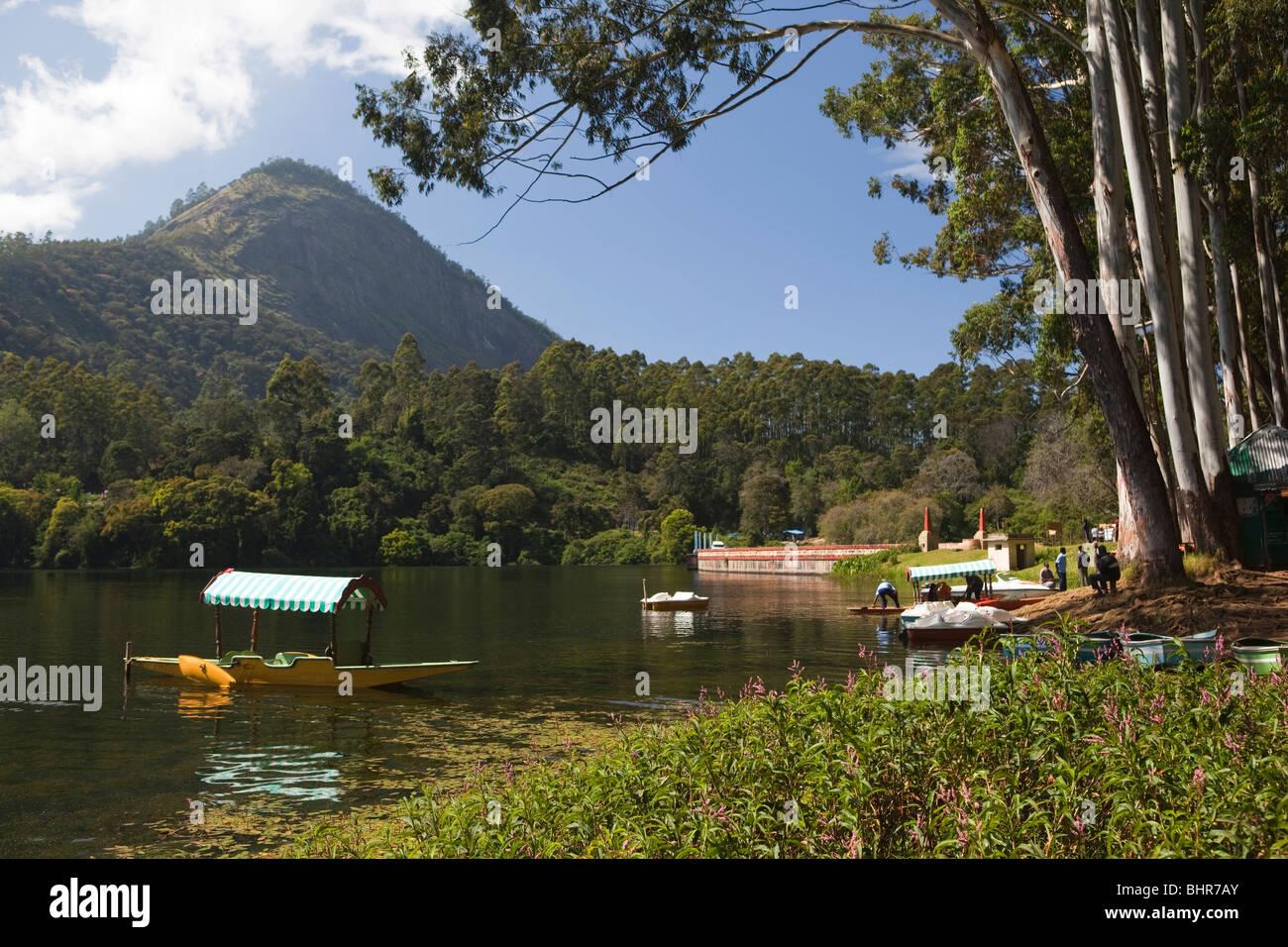 India, Kerala, Munnar, Kundala Lake, shikara Kashmiri style rowing boats for hire - Stock Image