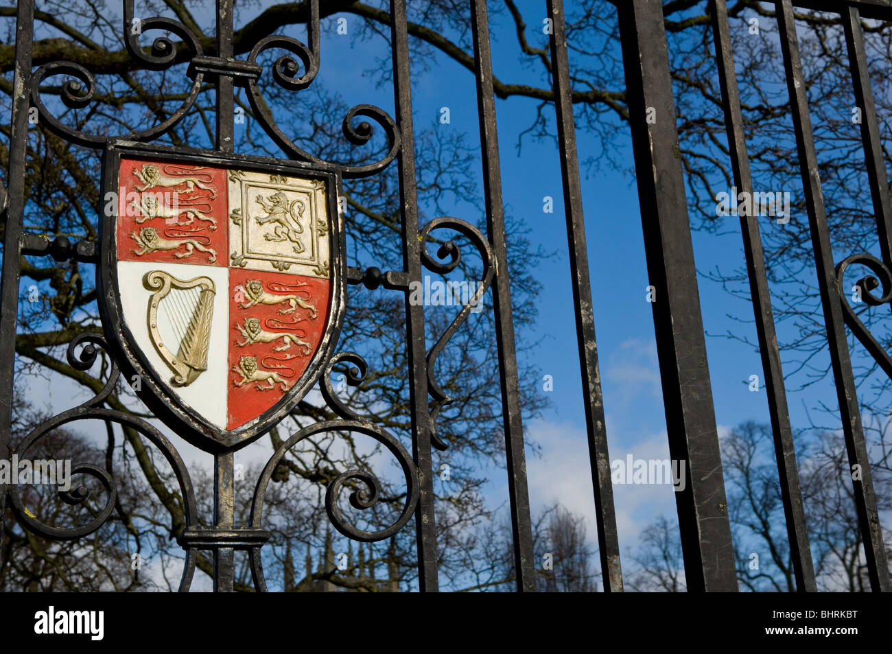 Coat of Arms of Oxford colleges mounted onto wrought iron gates - Stock Image