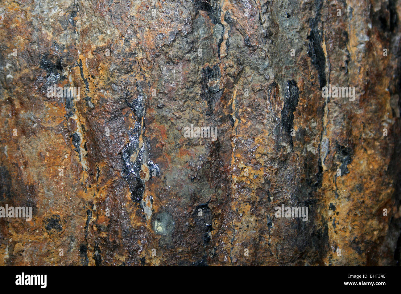 Fossilised Wood Ochre Color - Stock Image