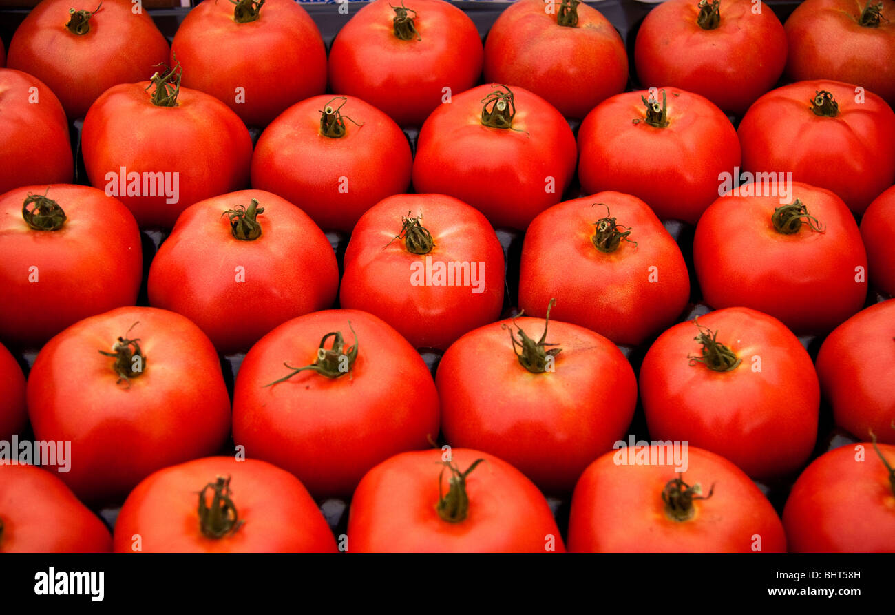Tomatoes with stems in a flat at the farmers market - Stock Image