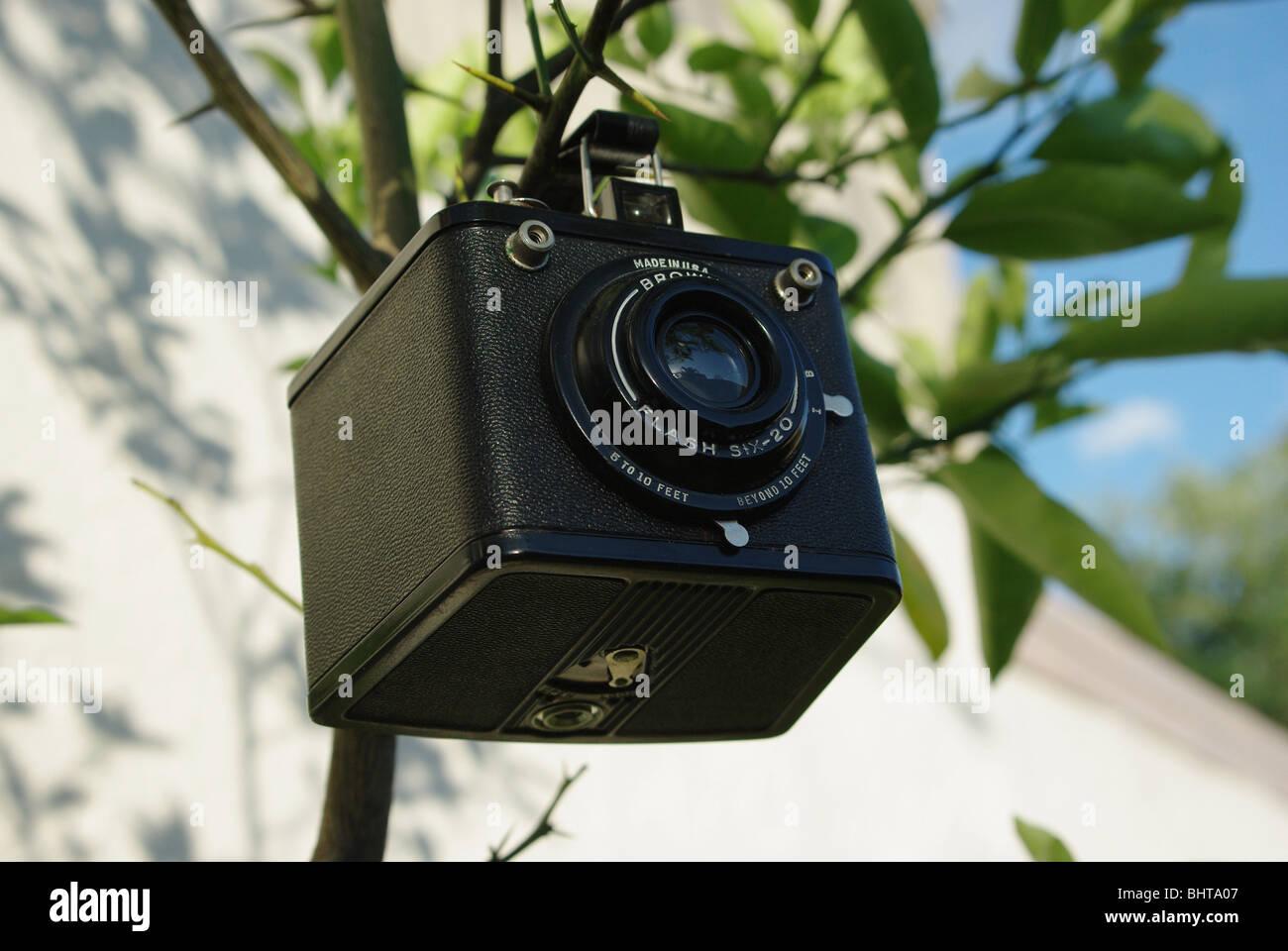 Brownie box camera - Stock Image