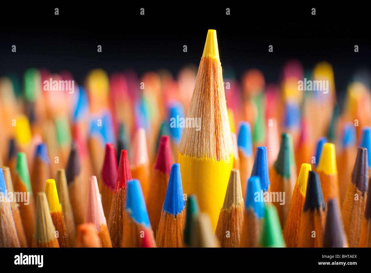 Color pencils representing the concept of Standing out from the crowd - Stock Image