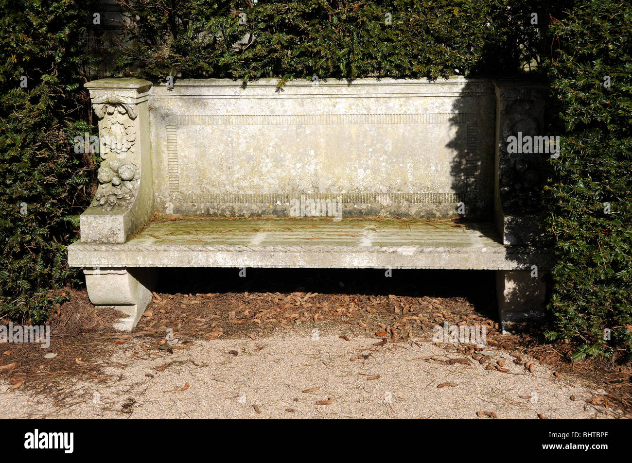 bench in yew hedge - Stock Image