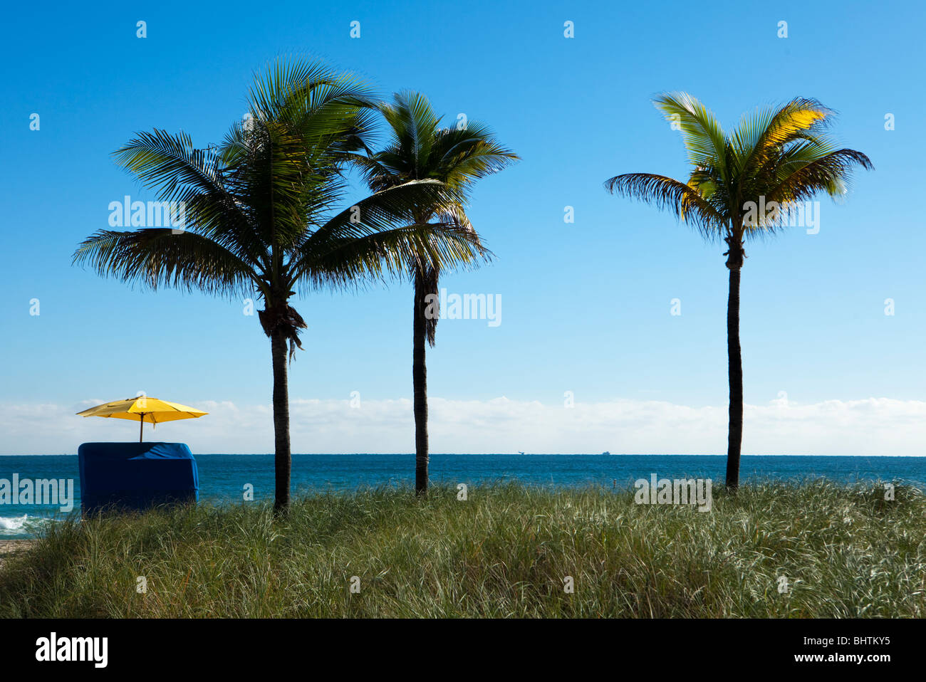 A single umbrella on the beach located next to three palm trees provides solitude and quiet during vacations. - Stock Image