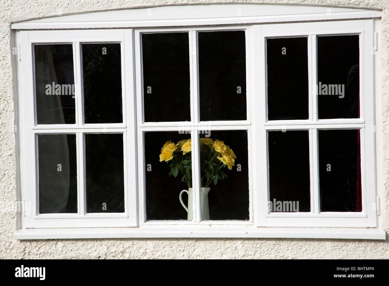 Yellow roses in vase on windowsill - Stock Image