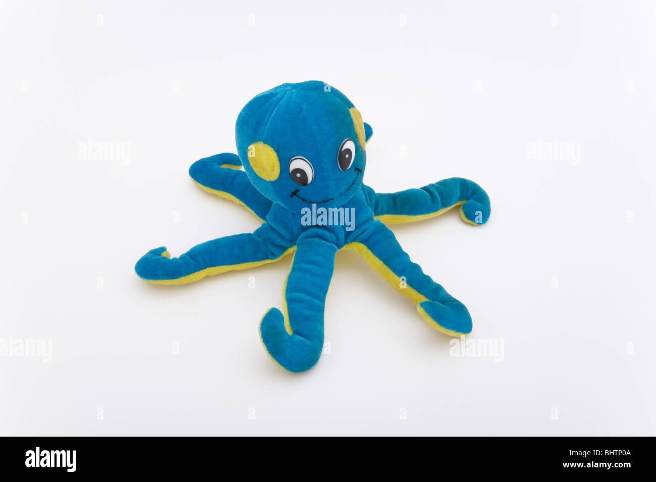 Smile Toys And Joys : Baby octopus animal stock photos