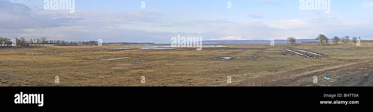Panoramic over the moor area Hornborgasjön (Lake Hornborga), Sweden, where thousands of Cranes rest every spring. Stock Photo