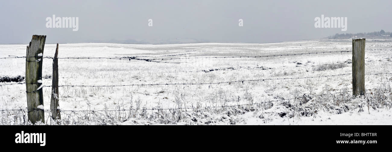 Panoramic view over a cold snow covered marsh or barbed-wire field seen  at location Vesterlyng during the Danish - Stock Image