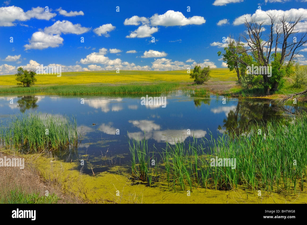 The Pioneer Picnic Ground at Buffalo Gap National Grassland in Nebraska,  United States of America Stock Photo